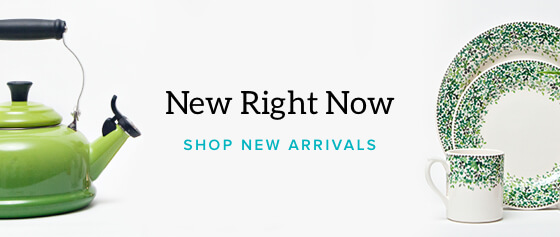 New Arrivals Homepage Shop Banner