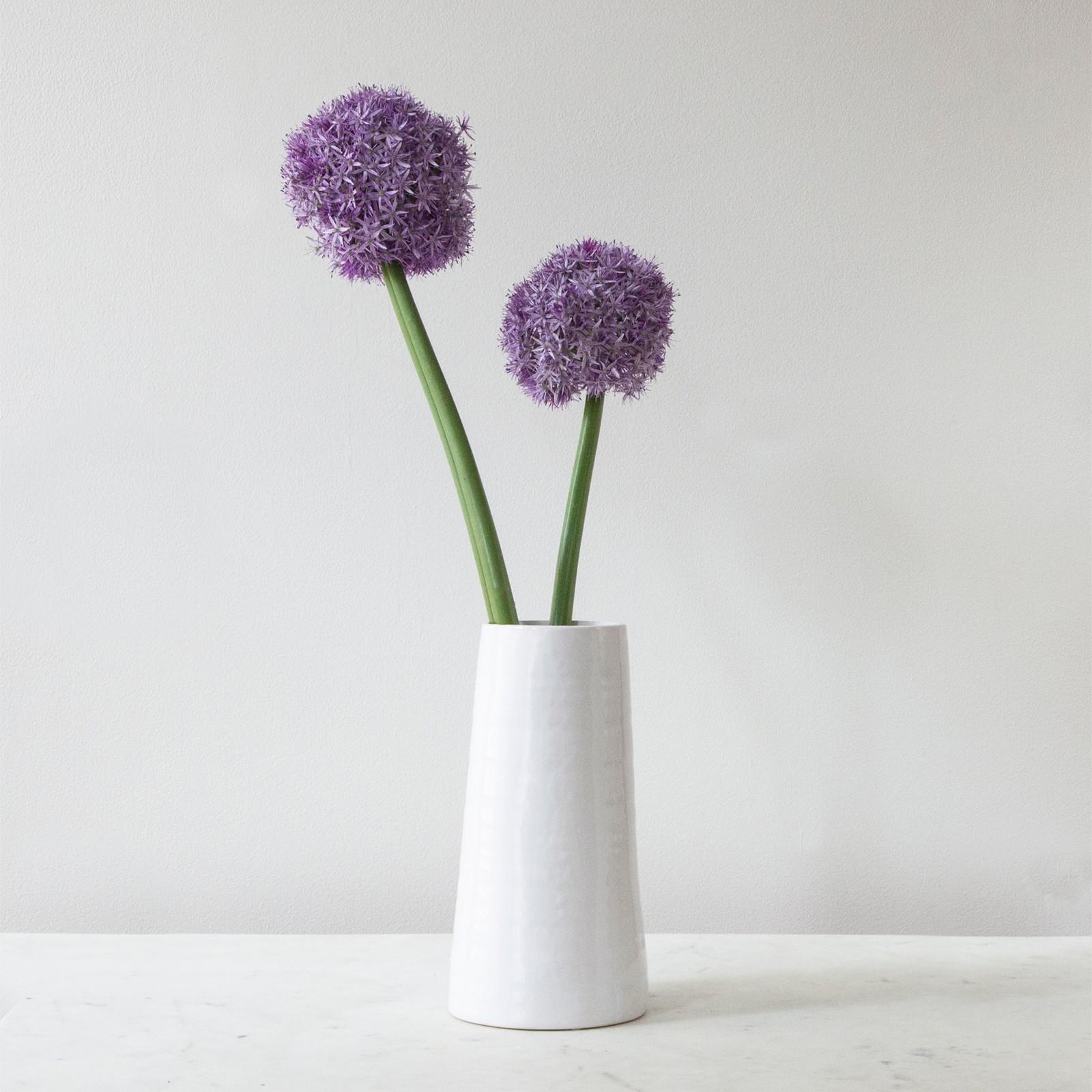Vases zola reviewsmspy
