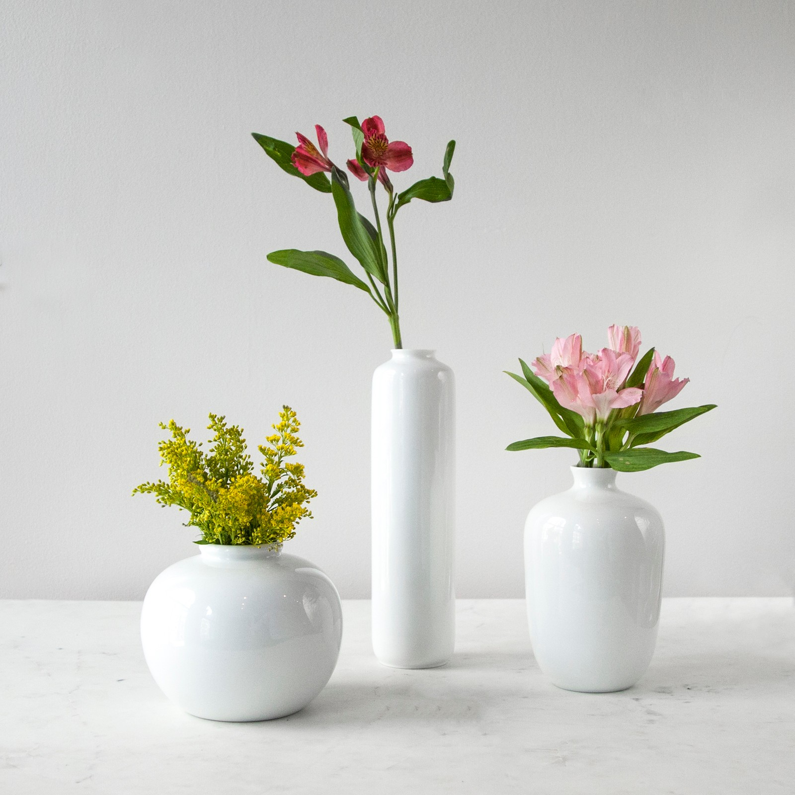 Small lotus root vase zola reviewsmspy